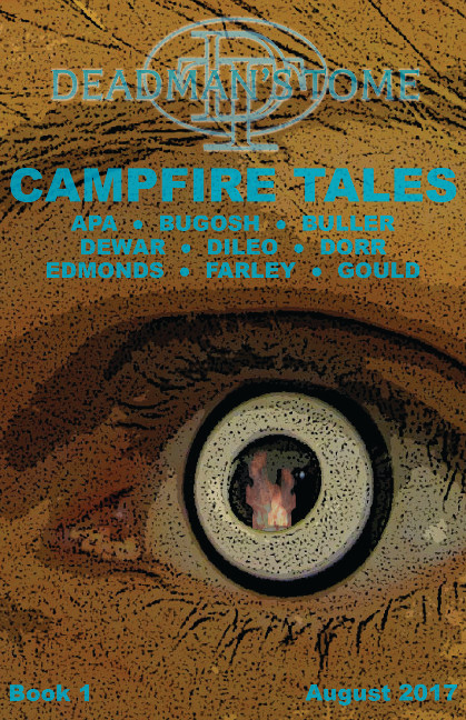 campfire_book1_cover_final_front-only6x9.jpg