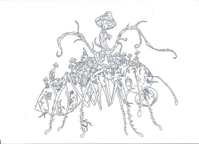 zombie ant _ cyprus-1